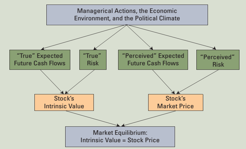 An Intro to Stocks | Understanding Stocks Today