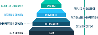 The Importance of Database Management System| A Vital Tool