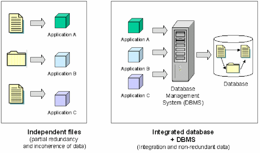 The Importance of Database Management Systems| A Vital Tool